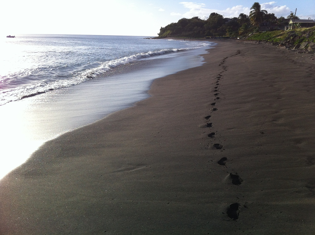 Timothy beach